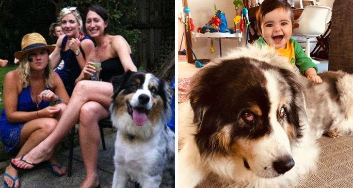 mm6 - 40 divertidas fotos que muestran cómo te cambia la vida después de que tienes hijos. Ya no es igual