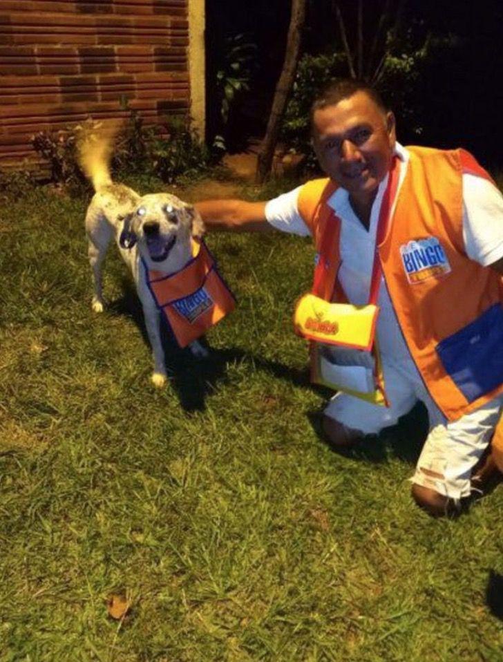 Captura de Pantalla 2021 01 21 a las 17.24.53 - Indio, el perrito vendedor de lotería, recibió regalos por su buen trabajo. Los merece todos