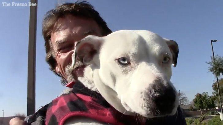 Captura de Pantalla 2021 01 25 a las 12.53.40 - Vagabundo con enfermedad terminal solo quiere que su perro esté bien cuidado. Es su último deseo