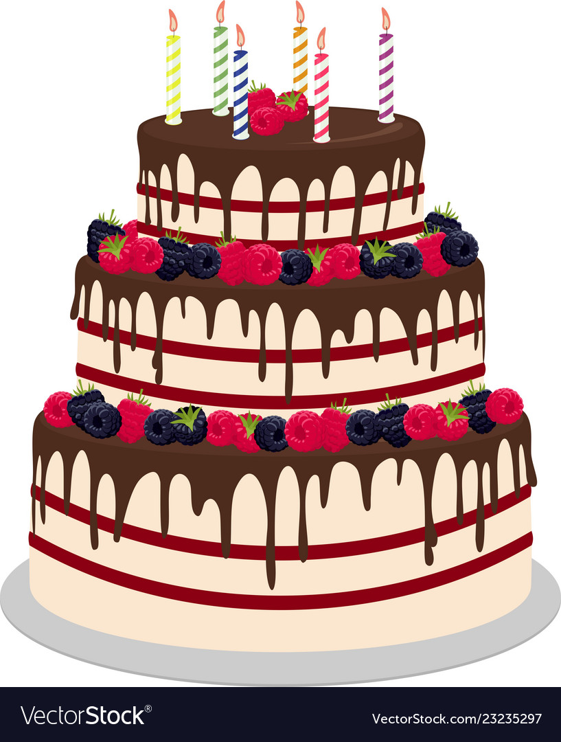 Three Tiered Wedding Or Birthday Cake In Chocolate