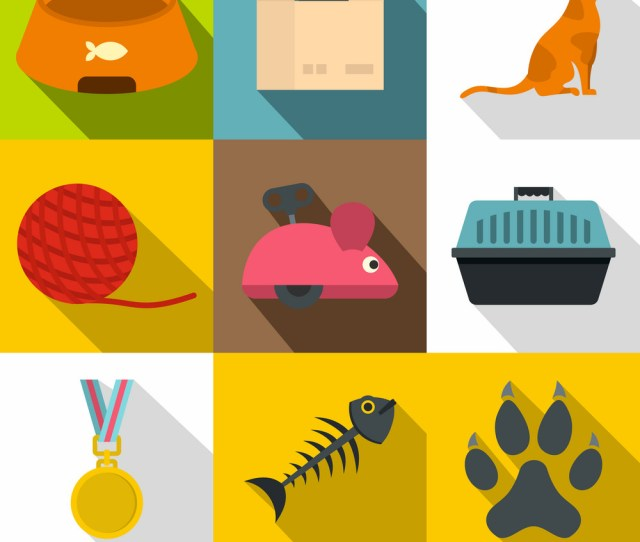 Cat Toys Icon Set Flat Style Vector Image