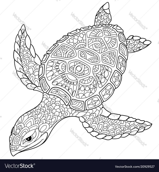 Turtle coloring page Royalty Free Vector Image
