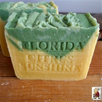 Natural Handmade Citrus Artisan Soap with Mango Butter and Tangerines,  All Natural Skin Care Soap Persian Orange