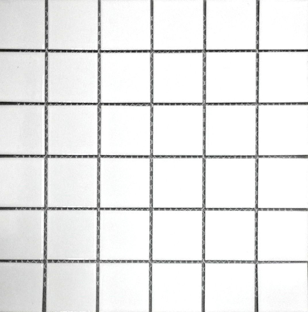 white 2x2 shiny porcelain mosaic floor and wall tile backsplash