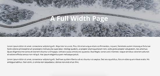 Full width page using theme's full width template