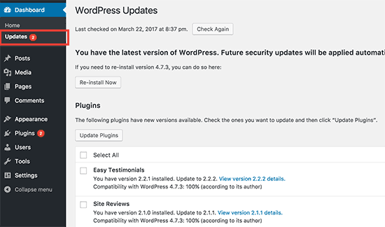Updates page in WordPress admin area