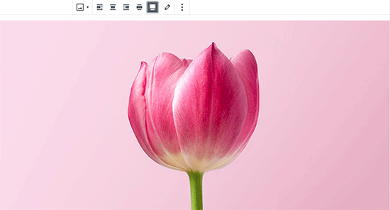 Создание изображения во всю ширину в WordPress