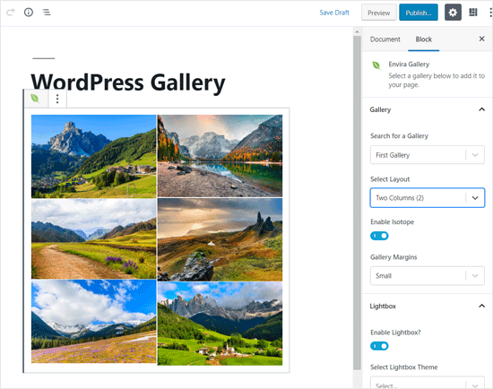 Envira Gallery Best WordPress Block for Photo Gallery