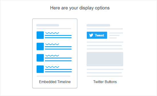 Twitter Publish Display Options