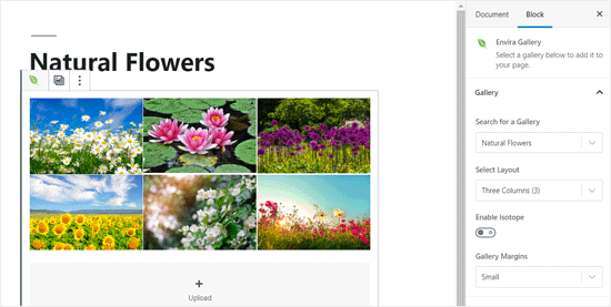 Envira Gallery Added to WordPress Post Editor