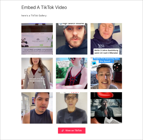 Galleria TikTok nella pagina