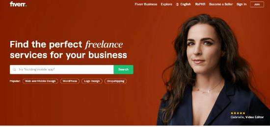 fiverr custom logo for wordpress