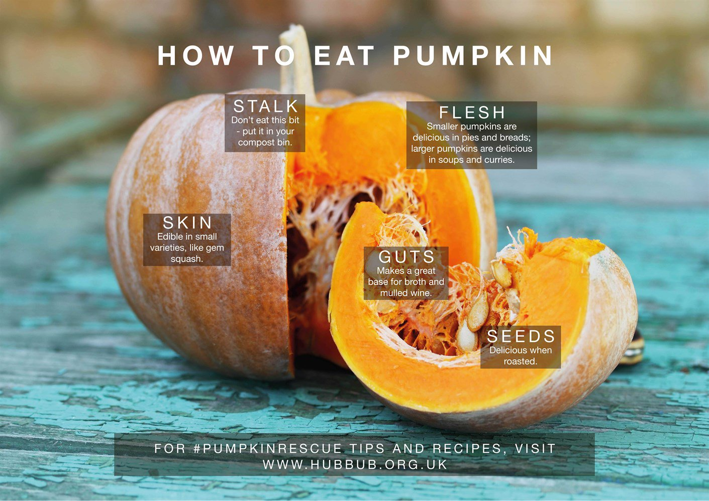 Eating Your Halloween Pumpkin Is Good For Your Tummy And