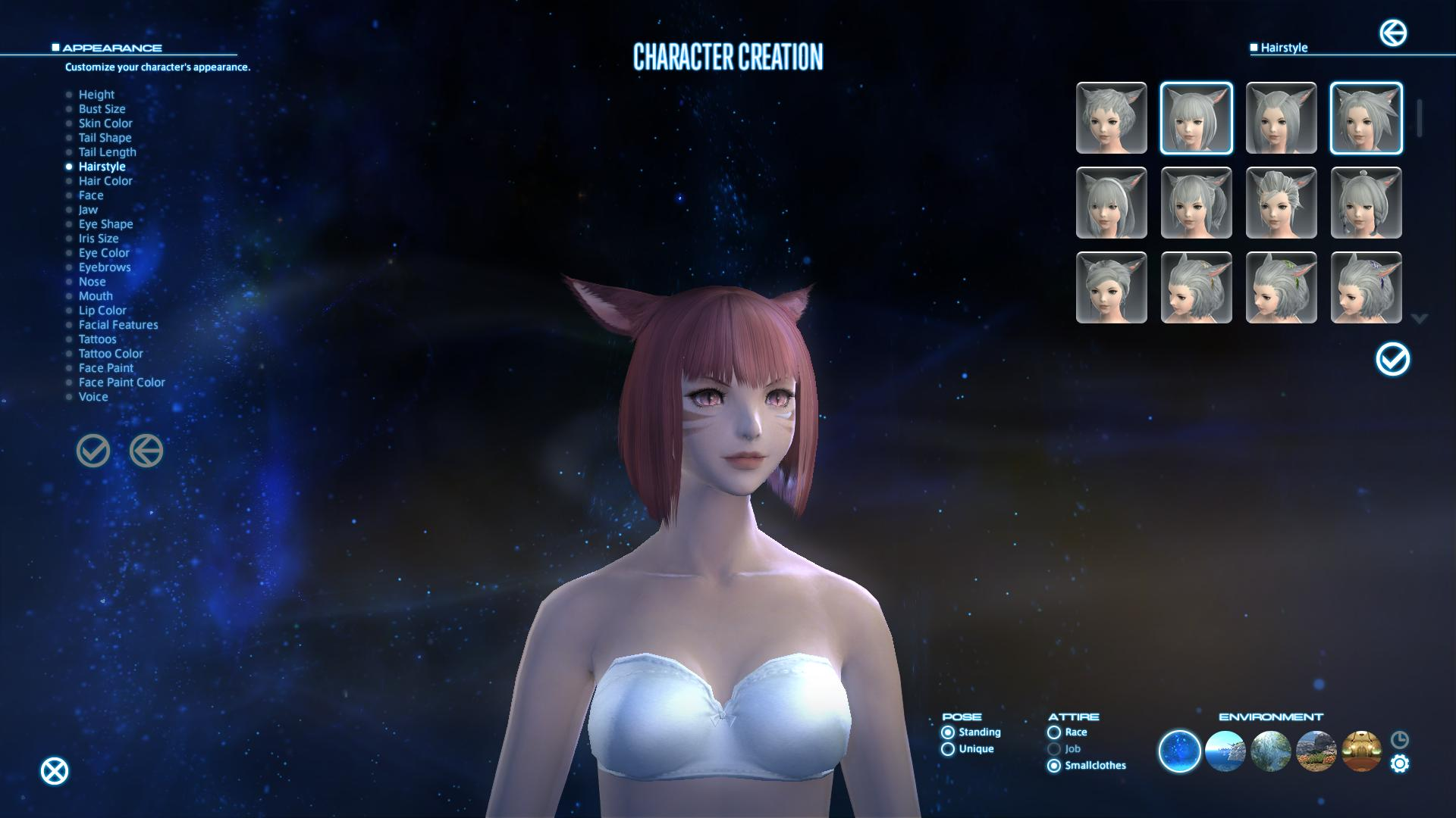 Final Fantasy XIV A Realm Reborn Wont Have A Character Creation Benchmark For PS3