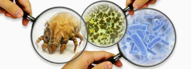 contaminação biológica