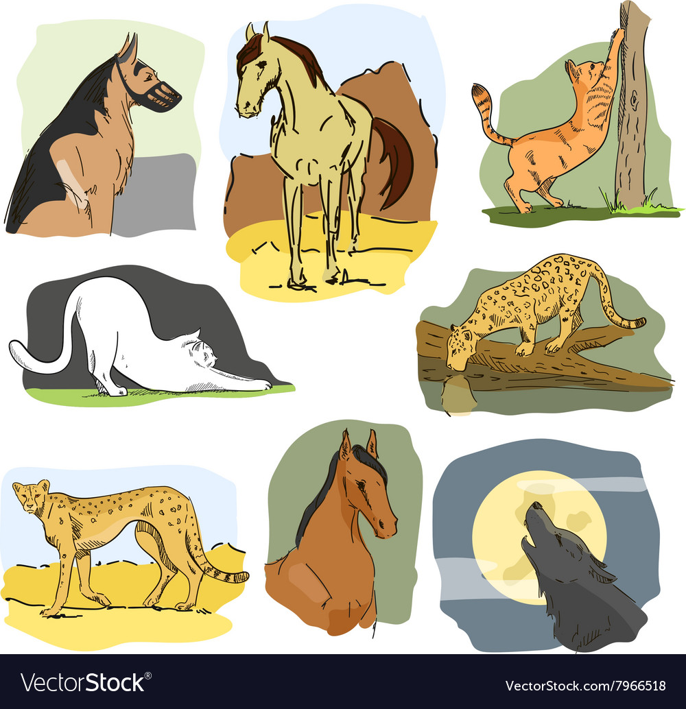 Set Of Wild And Home Animals Hand Drawn Royalty Free Vector