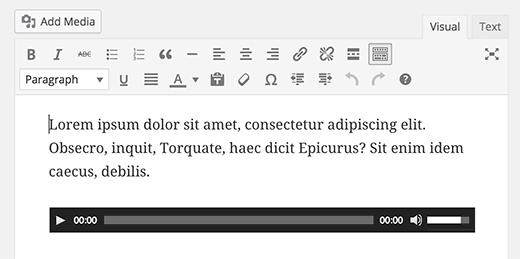 Tệp âm thanh đơn được nhúng vào trình chỉnh sửa hình ảnh WordPress