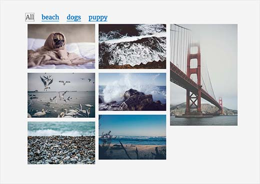 An image gallery with tags
