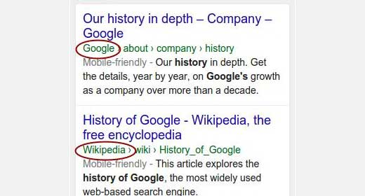 Company name in search results