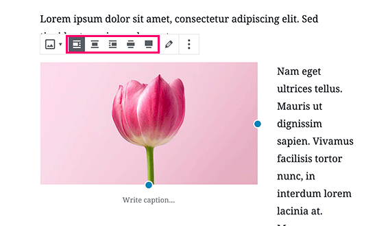 Image alignment buttons in WordPress post editor