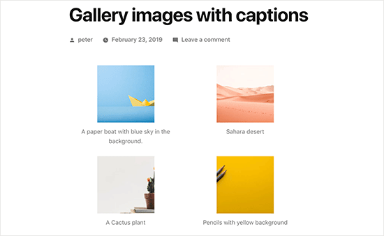 Classic editor gallery images with captions