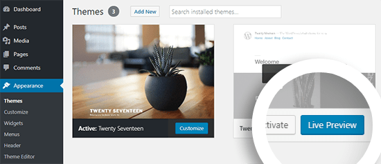 WordPress Thema Live Preview-optie