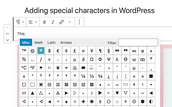 Add special characters in Gutenberg WordPress block editor