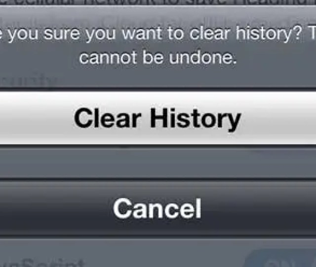 Confirm That You Want To Clear Your History