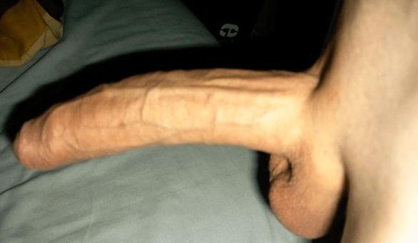 Uncircumcised Cock