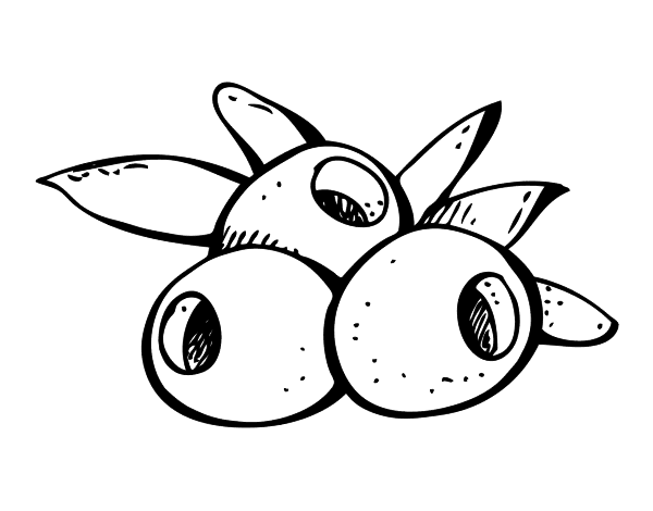 olive colouring pages