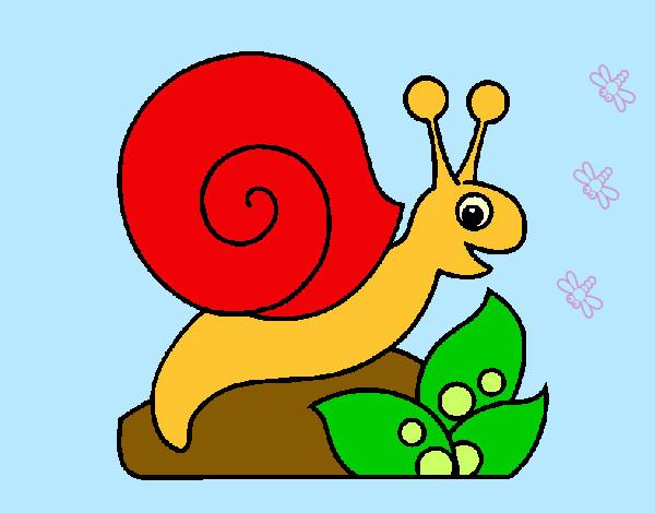 Resultado de imagen para caracol dibujo infantil