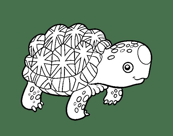 Animales Para Dibujar Tortuga On Log Wall