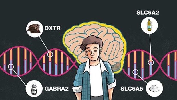Гены OXTR SLC6A2 GABRA2 и SLC6A5 дирижируют диетой человека