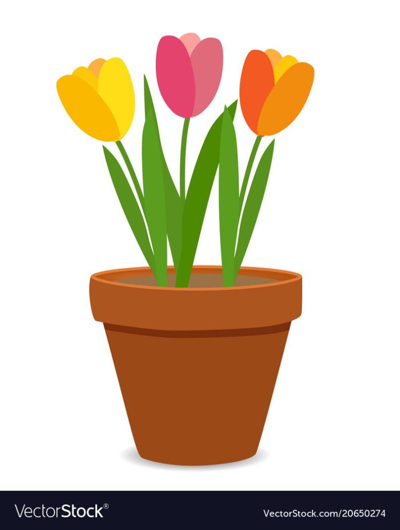 07ee710f5ffcb Spring Tulip Flowers In Flower Pot Royalty Free Vector Image