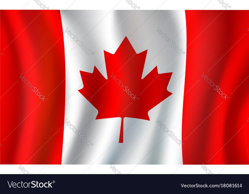 Why Is The Maple Leaf The Symbol Of Canada Leafjdi