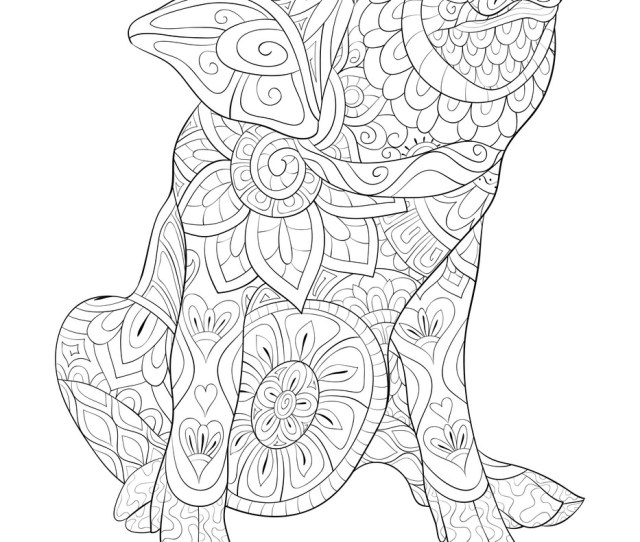 Adult Coloring Book Page A Cute Pig Image For Vector Image