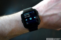 Fitbit Versa music controls