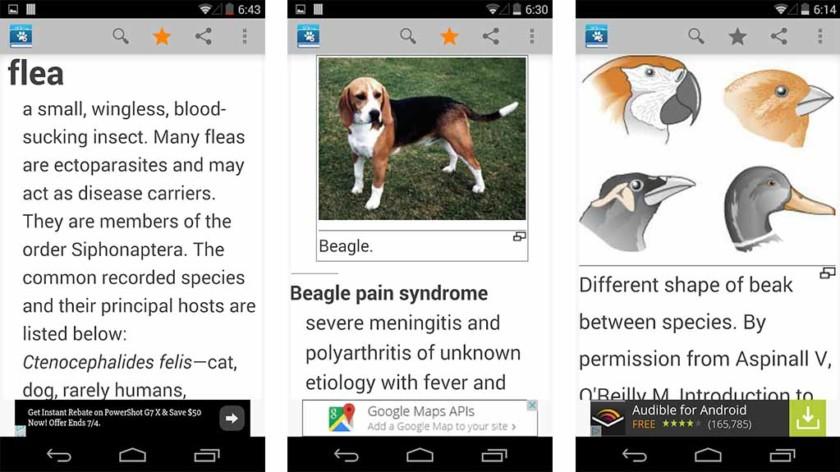 Veterinary Dictionary