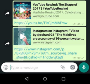 WhatsApp's picture-in-picture videos.