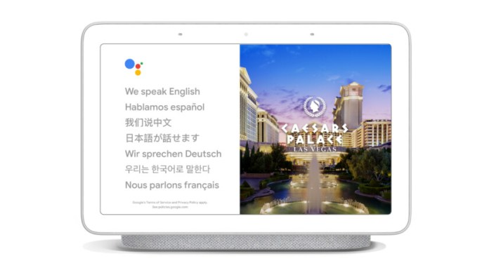 Google Assistant Home Interpretor Mode