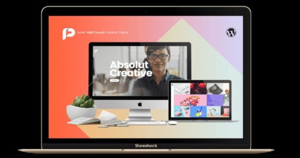 Storeshock WordPress Themes Example