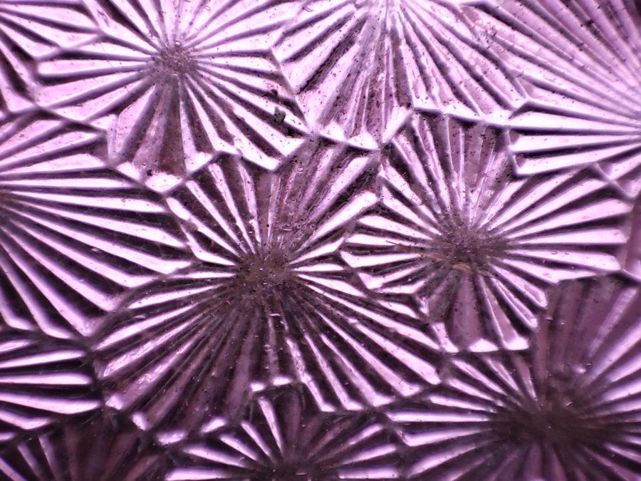Pocophone F2 Pro макро тест фиолетового стекла