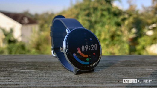 Zepp E Circle Review Standing on Wood