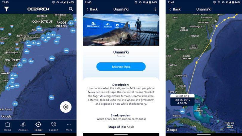 Shark Tracker by Ocearch screenshot
