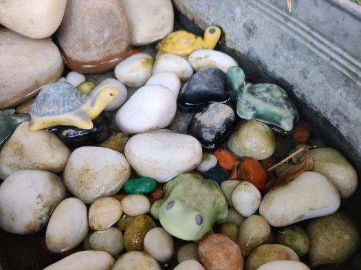 OnePlus Nord primary sensor shot of some different colored pebbles and stones.