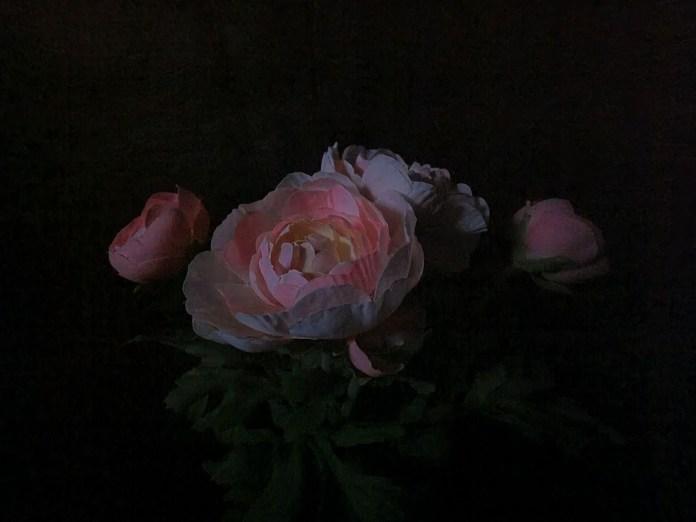 s21 ultra flowers