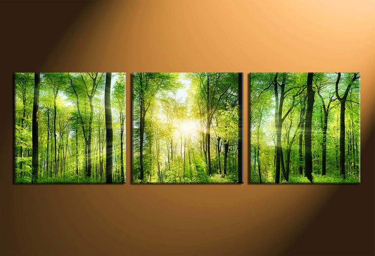 3 Piece Multi Panel Canvas, Green Scenery Artwork, Forest