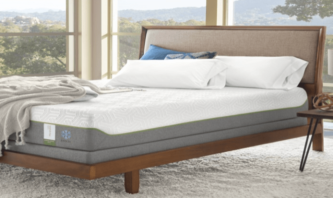 Model Highlight Tempurpedic Flex Supreme Is The Newest Version Of Tempur Foam On Top Pocket Coil Springs Great Thing About That It