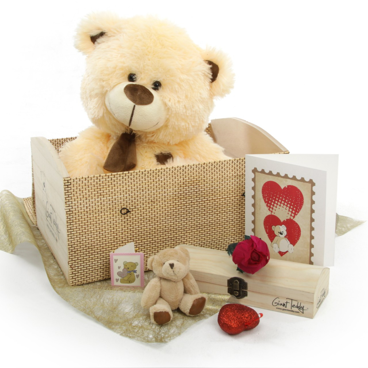 Love Doctor Bear Hug Care Package Featuring 20 BooBoo