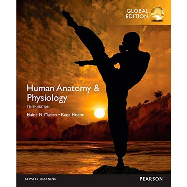 Human Anatomy   Physiology  10th Edition  Marieb   9780321927040     Human Anatomy   Physiology  10th Edition  Marieb